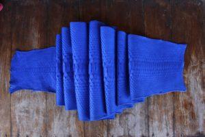 IMG 0453 300x200 Кожа питона цвет синий
