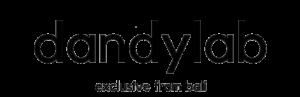 logo 300x97 Логотип Dandylab