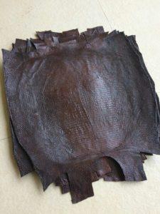 9cuo1eehNW8 225x300 Коричневый цвет кожи питона