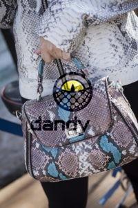 Dandylab piton036 1 200x300 Женская сумка из натуральной кожи питона