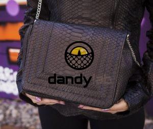 Dandylab piton090 e1476020446177 300x254 Сумка из натуральной кожи питона