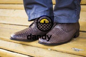 Dandylab piton096 300x200 Мужские туфли из натуральной кожи питона