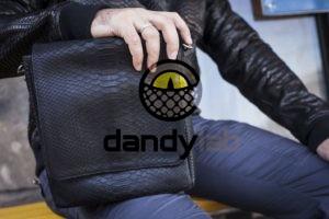 Dandylab piton104 300x200 Мужская сумка из натуральной кожи питона