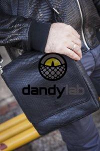 Dandylab piton106 200x300 Мужская сумка из натуральной кожи питона