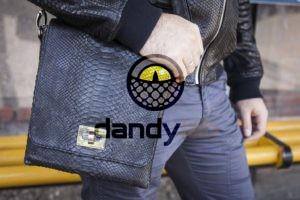 Dandylab piton107 300x200 Сумка из натуральной кожи питона