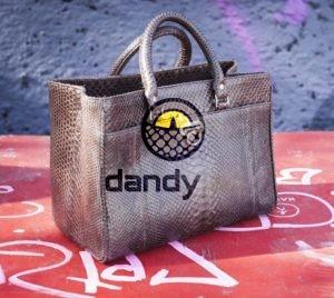Dandylab piton110 e1475979160731 300x268 Сумка из натуральной кожи питона