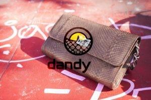 Dandylab piton116 300x200 Женский клатч портмоне из натуральной кожи питона