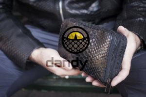 Dandylab piton119 300x200 Портмоне из натуральной кожи питона