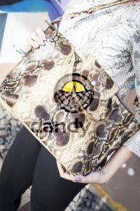 Dandylab piton140 200x300 Сумка из натуральной кожи питона