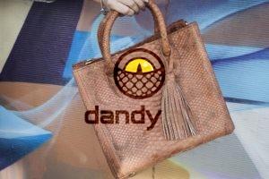 Dandylab piton152 300x200 Сумка из натуральной кожи питона