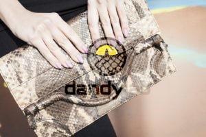 Dandylab piton157 300x200 Сумка из натуральной кожи питона
