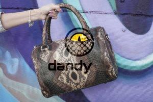 Dandylab piton175 300x200 Сумка из натуральной кожи питона
