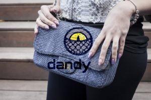 Dandylab piton177 300x200 Сумка из натуральной кожи питона