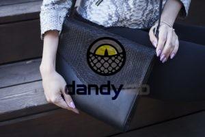 Dandylab piton209 300x200 Клатч косметичка из натуральной кожи питона