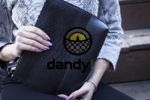 Dandylab piton212 300x200 Клатч косметичка из натуральной кожи питона