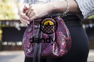 Dandylab piton220 300x200 Сумка мешочек из натуральной кожи питона
