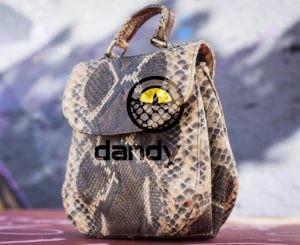 Dandylab piton238 e1476026082294 300x245 Сумка из натуральной кожи питона