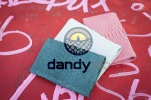 Dandylab piton243 300x200 Кошелек из натуральной кожи питона