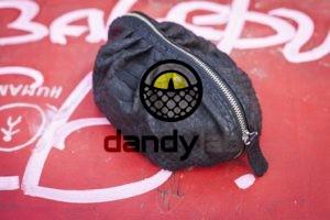Dandylab piton250 300x200 Косметичка из натуральной кожи питона