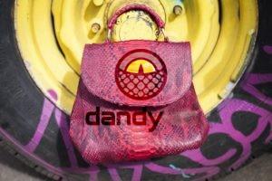 Dandylab piton252 300x200 Сумка из натуральной кожи питона