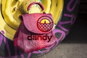 Dandylab piton253 300x200 Сумка из натуральной кожи питона