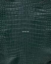кожа крокодила зеленая