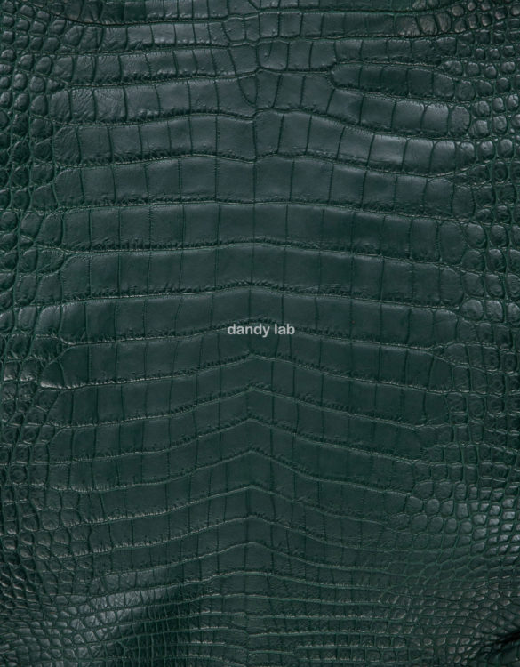 crocodile skin green
